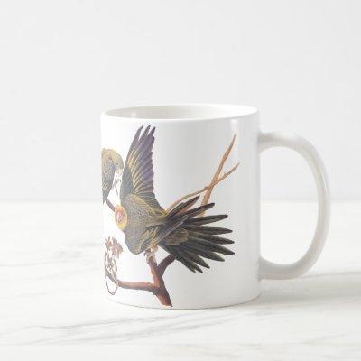 Audubon Carolina Parakeet Mug