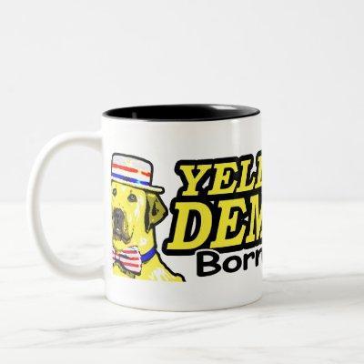 Born And Raised Mug