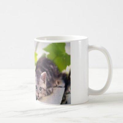 Cat & Bunny Best Friends Mug