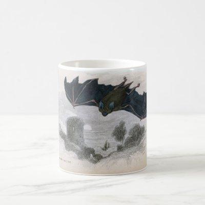 Classic Zoological Etching - Horseshoe Bat Coffee Mug