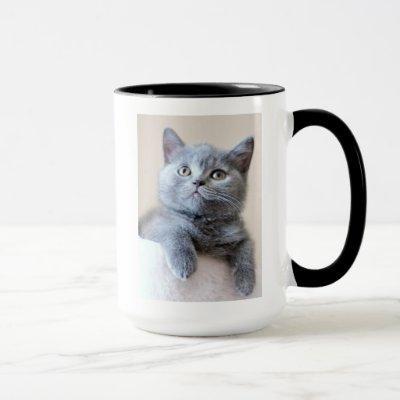 Gray British Shorthair Cat Mug