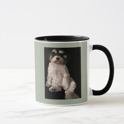 Havanese-put your dog's picture here mug