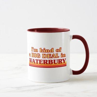 I am kind of a BIG DEAL in Waterbury Mug