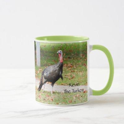 Kevin The Turkey - Old Wethersfield , CT (2 pics) Mug
