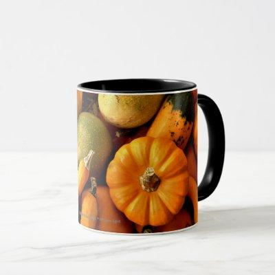 Mini Pumpkins And Gourds Assortment Fall Photo 2 Mug