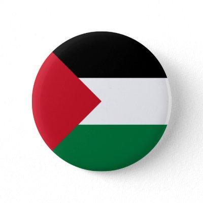 palestine pinback button