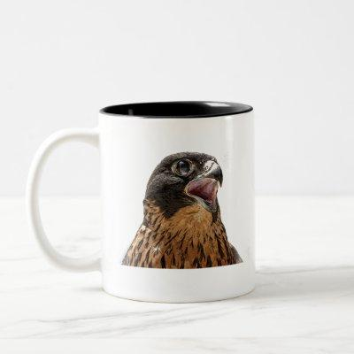 Personalised Peregrine Falcon Two-Tone Coffee Mug