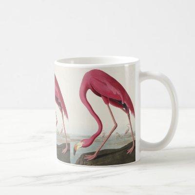 Pink Flamingo from Birds of America Coffee Mug