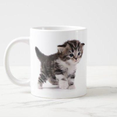 Scottish Fold Kitten Jumbo Mug