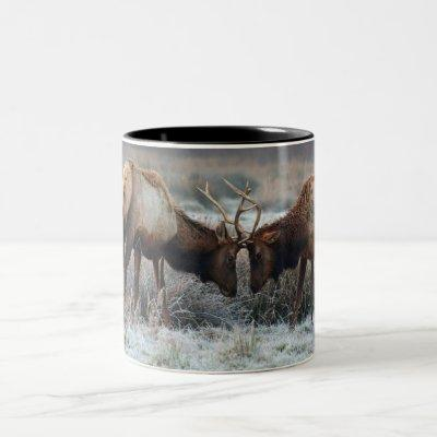 The Meeting of the Bulls  - Roosevelt Elk Two-Tone Coffee Mug