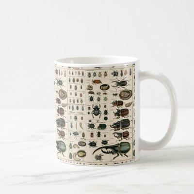 Vintage Beetle Illustration Coffee Mug