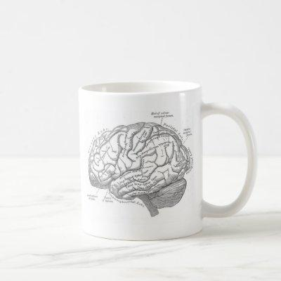 Vintage Brain Anatomy Coffee Mug