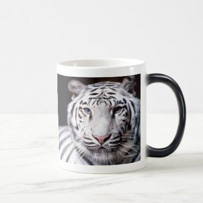 White Bengal Tiger Photography Magic Mug